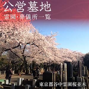 公営墓地 霊園・葬儀所一覧 東京都谷中霊園桜並木